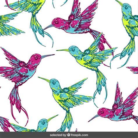 Patrón con los pájaros tropicales | Descargar Vectores gratis