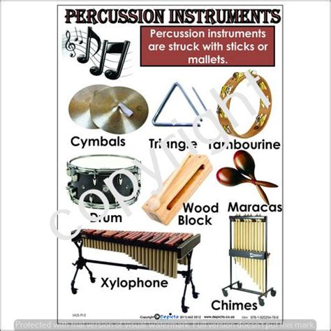 Percussion Instruments – Basic EduToys