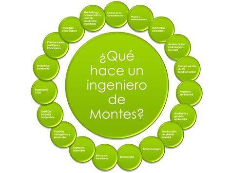Perfil Profesional del Ingeniero de Montes   Colegio ...