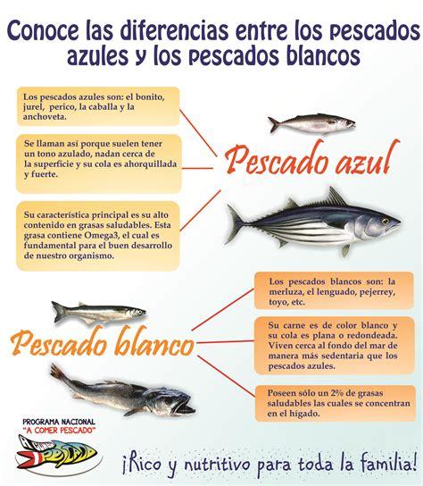 pescados azules y blancos – A Comer Pescado