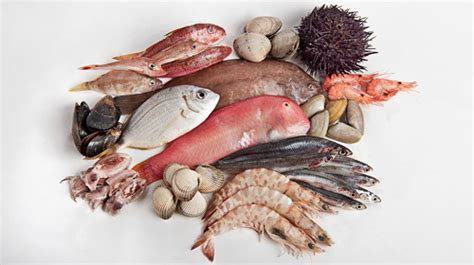 Pescados mas nocivos