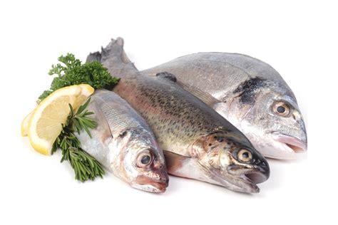 Pescados - Recetas y Consejos