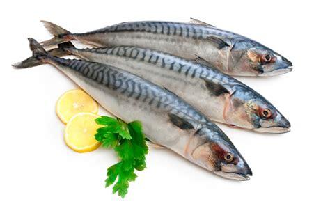 Pescados - Taringa!