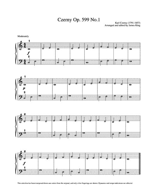 Piano Exercises For Beginners Pdf   practical exercises ...