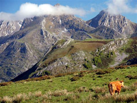 Picos de Europa: el despertar de la primavera   Muntania