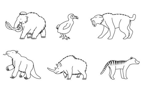 Pin Animales prehistoricos para colorear on Pinterest