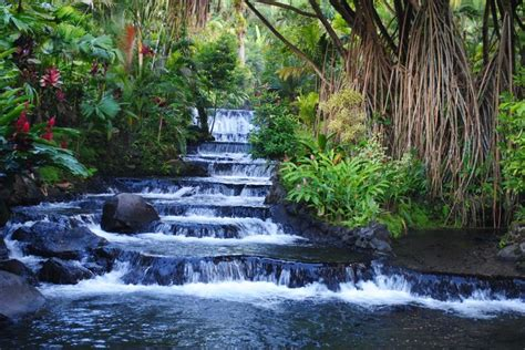 Pin by CRS Tours on Costa Rica's top destinations | Pinterest