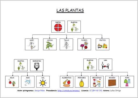 Pin de Alba Vera en ciencias | Pinterest | Ciencia ...