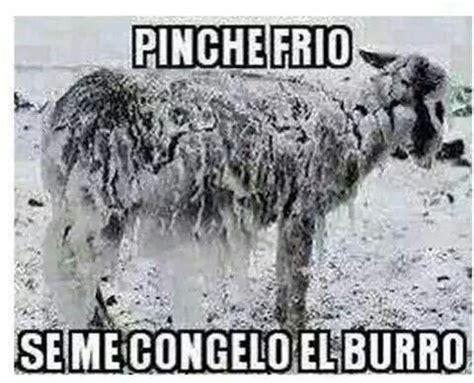 Pinche frio   Memes   Pinterest