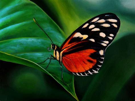 Pintura Moderna y Fotografía Artística : Oleos bellas ...