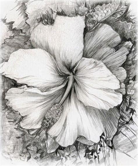 Pintura y Fotografía Artística : Dibujos a Lapiz de ...