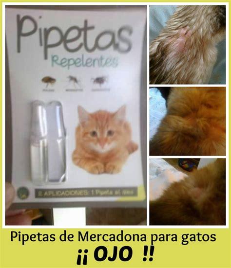 Pipetas de Mercadona para gatos...... ¡¡Ojo!! Dermatitis ...