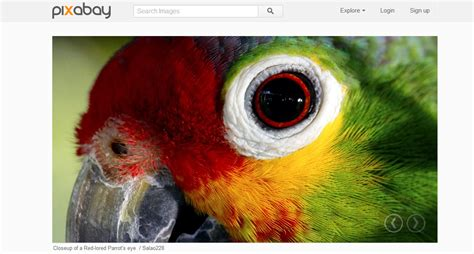 PixaBay – Free quality images (Public domain images ...