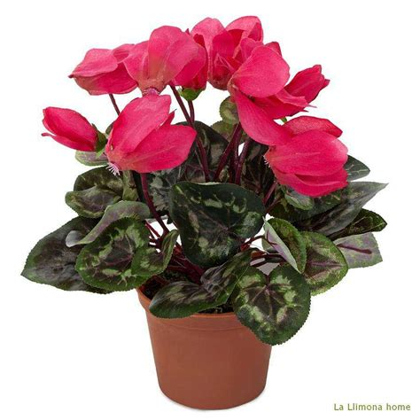 Planta artificial flores cyclamen artificial