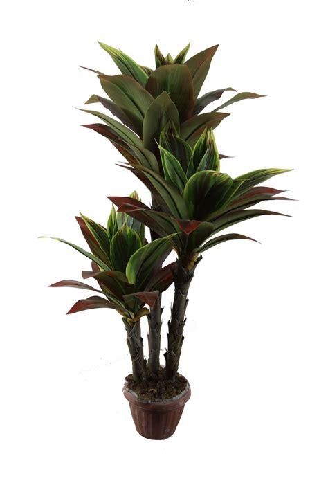 Planta del Dracaena de la alta calidad, planta artificial ...