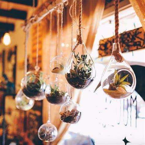 Plantas colgantes para inspirarse - Una casa con vistas