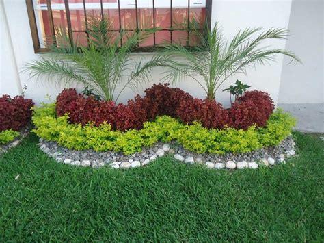 Plantas Curativas | Jardines pequeños, Jardín y Pequeños