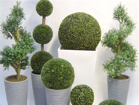 Plantas De Exterior Baratas - Diseños Arquitectónicos ...