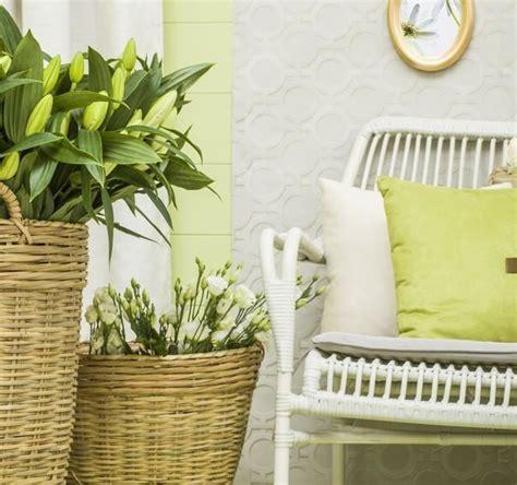 Plantas de interior que te ayudan a dormir - Leroy Merlin