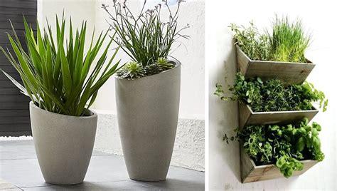 Plantas De Interior Sin Luz. Plantas Interiores Para ...
