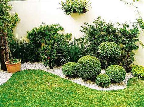Plantas decorativas para jardines pequeños | Diario La Primera