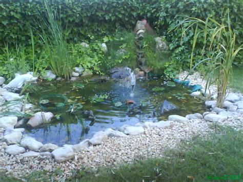 Plantas » estanques de agua