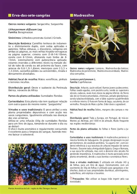 Plantas medicinais para curar acido urico - consejos para ...