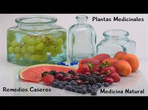 Plantas Medicinales. Medicina Natural. Remedios Caseros ...
