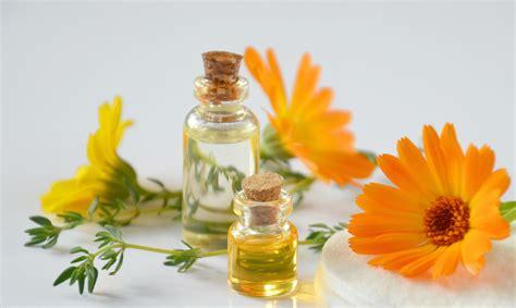 Plantas medicinales que son analgésicos naturales