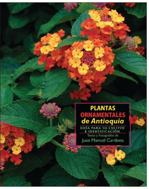 Plantas Ornamentales de Antioquia de Juan Manuel Cardona ...