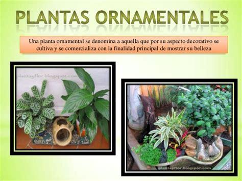 Plantas ornamentales y xerofilas