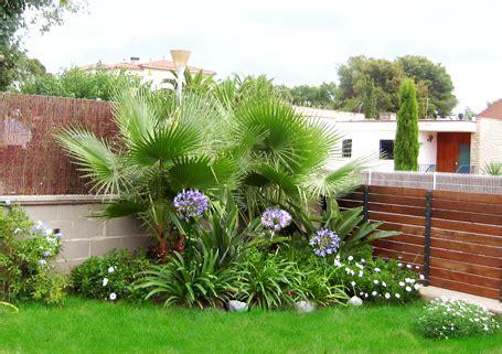 Plantas para Jardin Pequeño