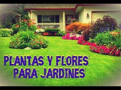 Plantas para Jardines Pequeños - Flores Hermosas - YouTube