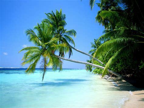 Playa Viajes: Viaje a Playa del Carmen, una de las mejores ...