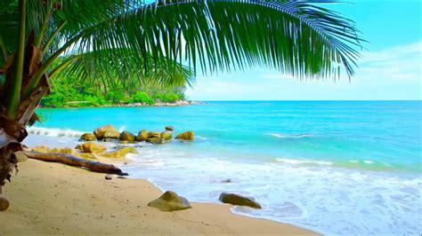 Playas Exóticas +sonido Dreamscenes y Wallpapers [Fondos ...