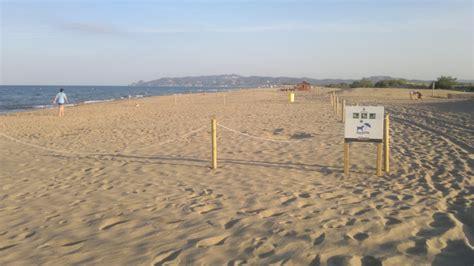Playas para perros en Cataluña 2018 - RedCanina.es