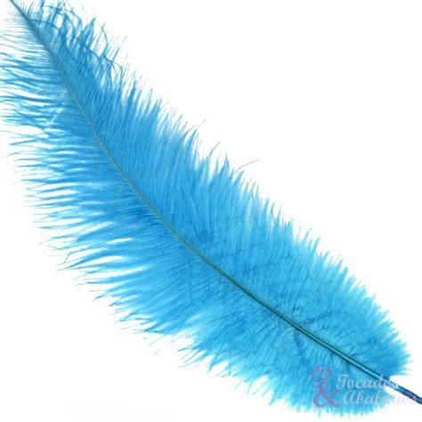 pluma avestruz 27/30 cm