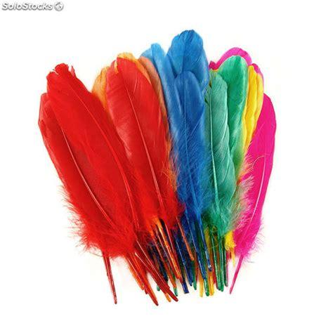 Plumas colores indio