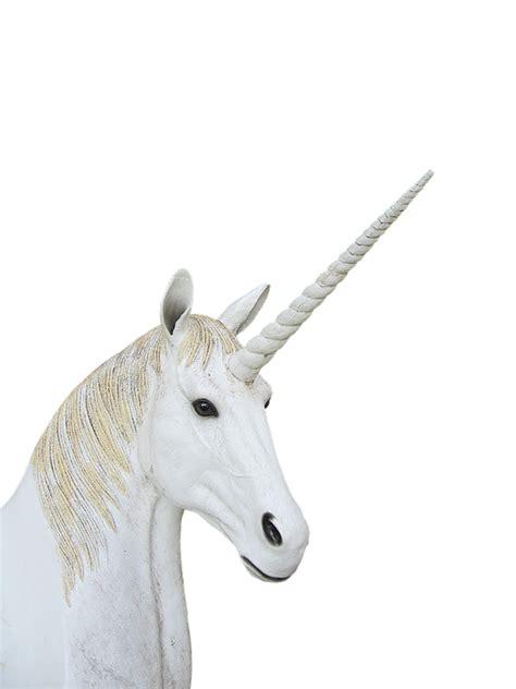 Png Unicorn Animal Magic · Free photo on Pixabay