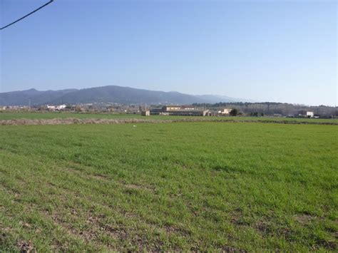 Població Les Franqueses del Vallès del camí