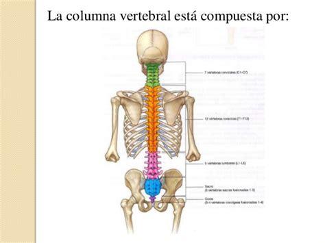 ¿Podría mi Dolor de Espalda ser Cáncer de Columna Vertebral?