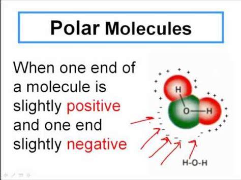Polar and Non-Polar Covalent Molecules - YouTube