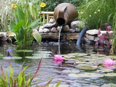Pond Plants - Home & GardenHome & Garden