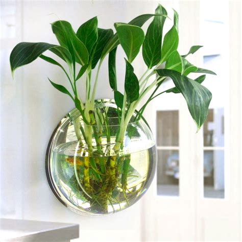 Popular Aquarium Plant Pots Buy Cheap Aquarium Plant Pots ...