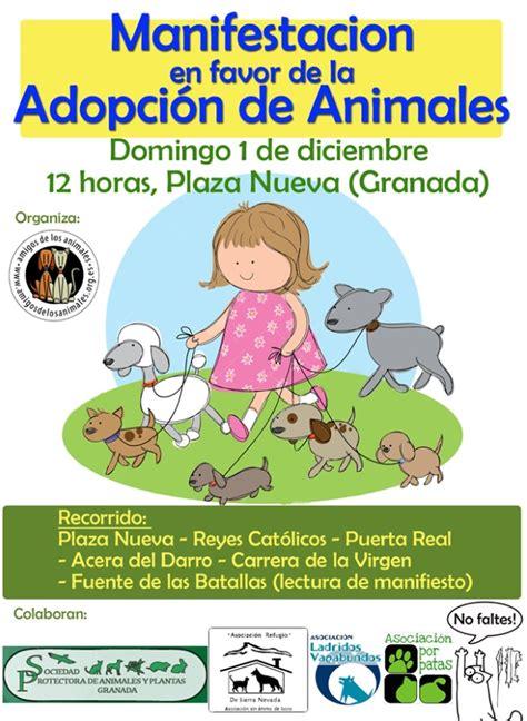 Por la adopción de perros y gatos | Alza la Pata