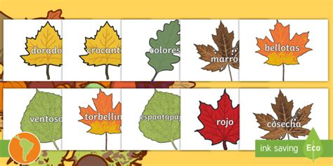 Pósters: Vocabulario de otoño en hojas - otoño, vocabulario