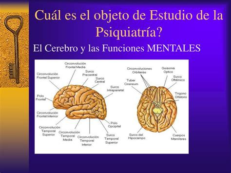 PPT   PSIQUIATRIA FORENSE PowerPoint Presentation   ID:3507834