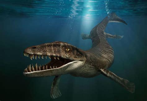 Prehistoric Marine Animals