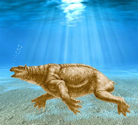 Prehistoric Marine Mammals