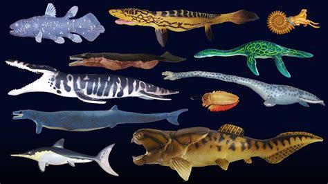 Prehistoric Sea Life   Dunkleosteus   The Kids  Picture ...